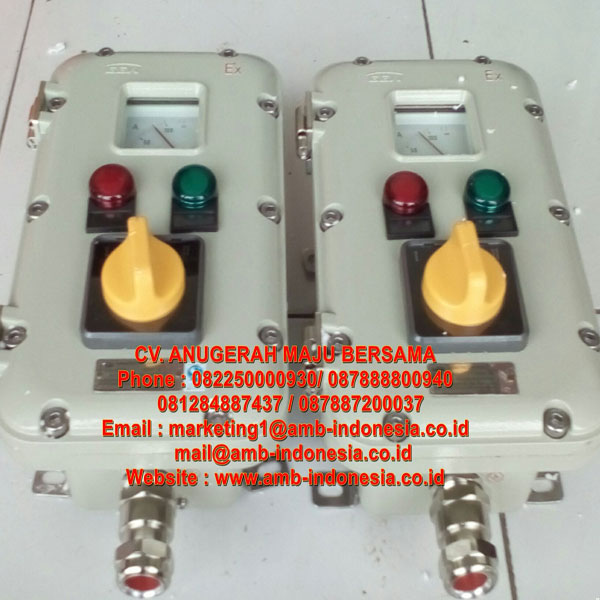 LCZ Series Explosion Proof Control Station
