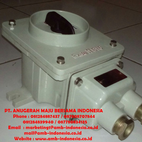 BHZ51 Explosion Proof Rotary Switch