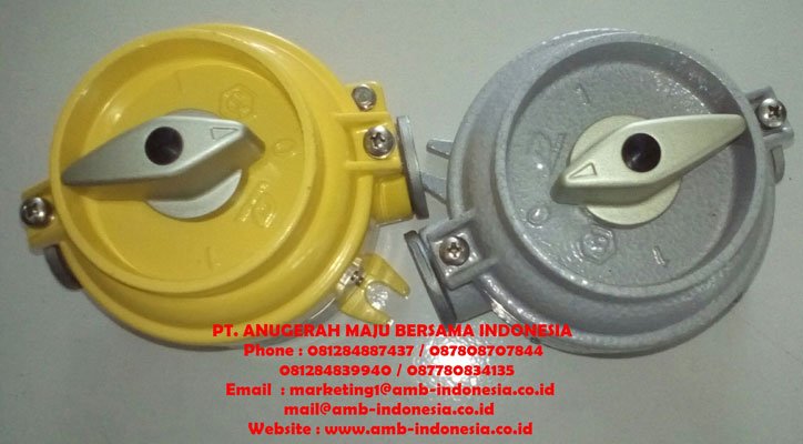 Explosion proof Control & Protection