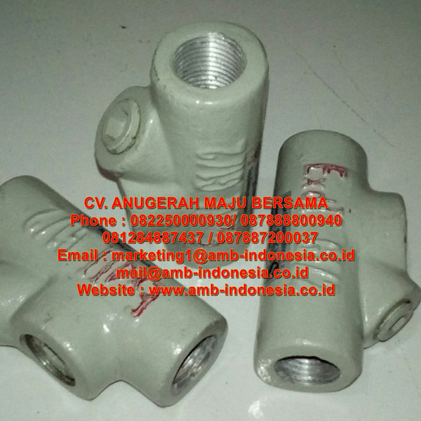 BCG Series Ex-Proof Sealing Fittings